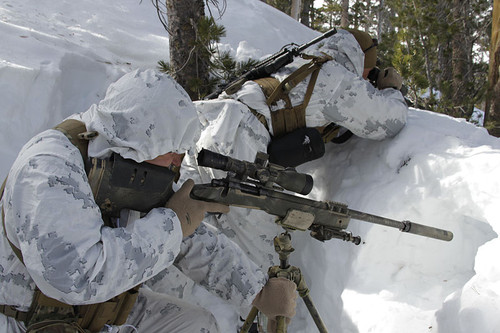 800pxscout_sniper_snow_marpat